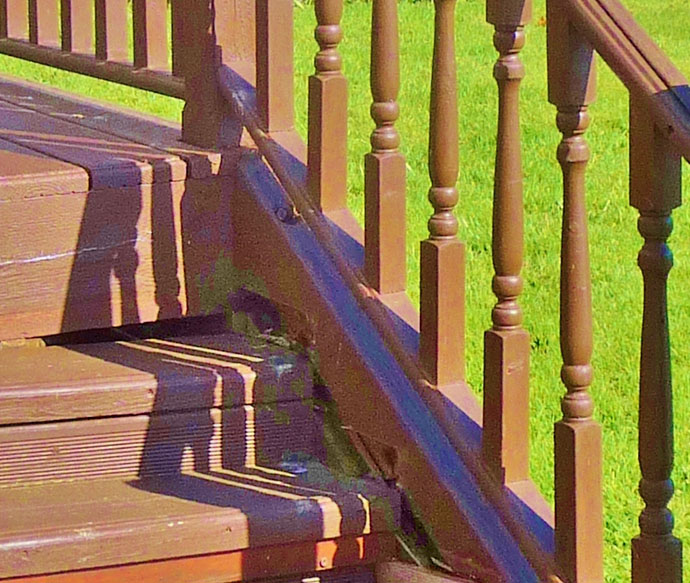 decking stairs made of wood